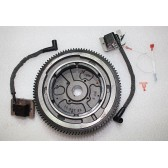 IGNITION MODULE CONVERSION KIT
